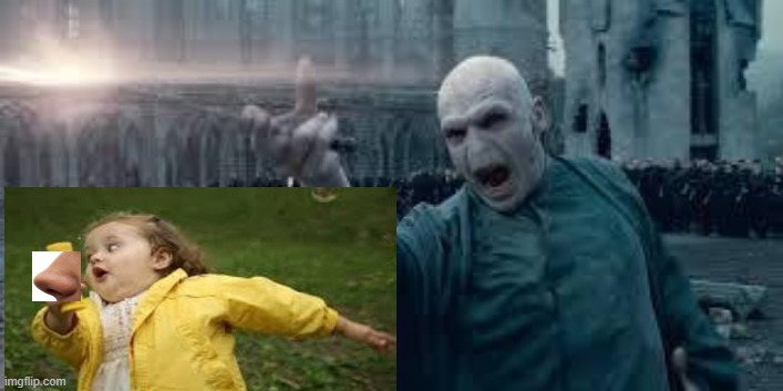 Voldemort | image tagged in voldemort | made w/ Imgflip meme maker