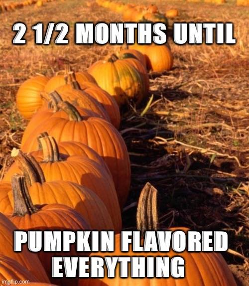 Pumpkin |  2 1/2 MONTHS UNTIL; PUMPKIN FLAVORED EVERYTHING | image tagged in pumpkin,pumpkin spice | made w/ Imgflip meme maker