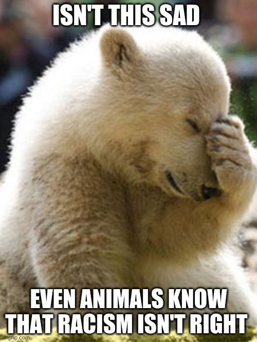 racism |  ISN'T THIS SAD; EVEN ANIMALS KNOW THAT RACISM ISN'T RIGHT | image tagged in memes,facepalm bear | made w/ Imgflip meme maker