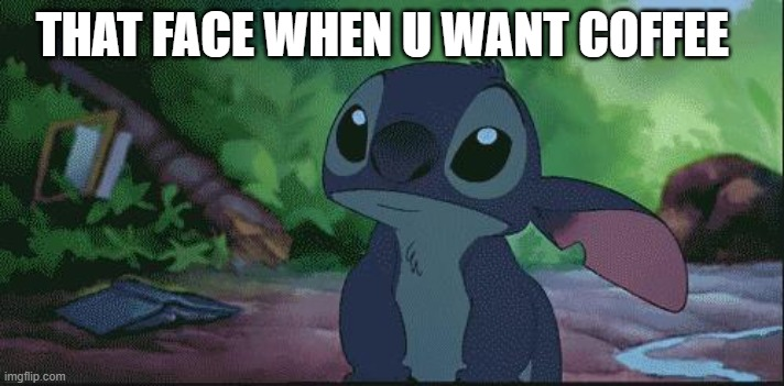 Stich |  THAT FACE WHEN U WANT COFFEE | image tagged in stich | made w/ Imgflip meme maker