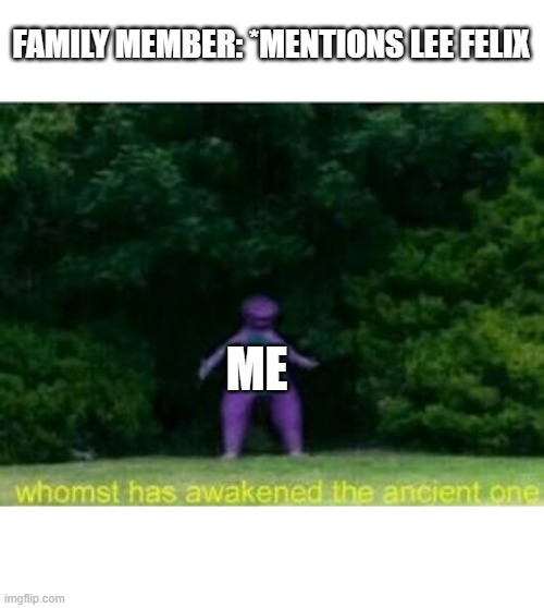 I have a problem |  FAMILY MEMBER: *MENTIONS LEE FELIX; ME | image tagged in whomst has awakened the ancient one,felix,lee felix | made w/ Imgflip meme maker
