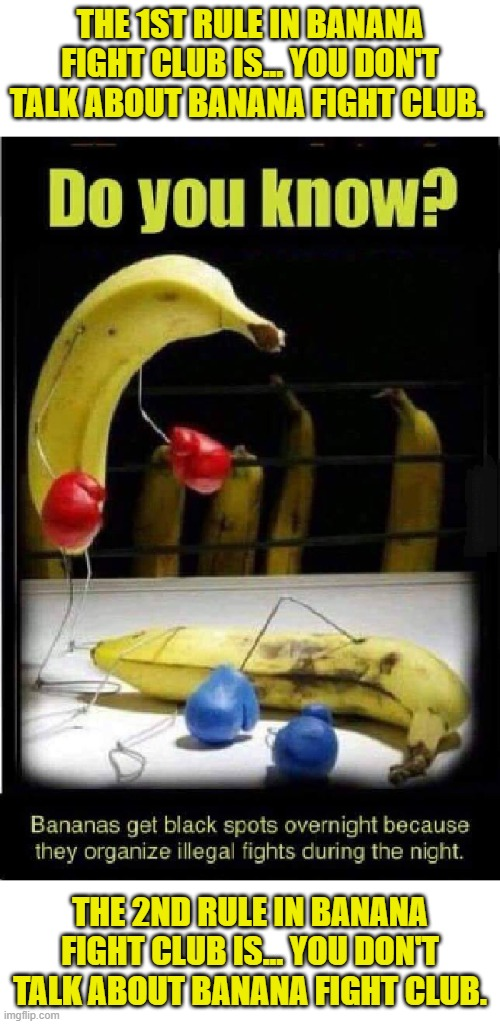 The 1st rule in Banana Fight Club Is... You Don't Talk About Banana Fight Club. |  THE 1ST RULE IN BANANA FIGHT CLUB IS... YOU DON'T TALK ABOUT BANANA FIGHT CLUB. THE 2ND RULE IN BANANA FIGHT CLUB IS... YOU DON'T TALK ABOUT BANANA FIGHT CLUB. | image tagged in banana fight club | made w/ Imgflip meme maker