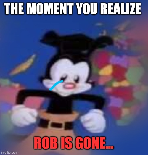 Rob is dead. Comment and pay your respects. |  THE MOMENT YOU REALIZE; ROB IS GONE… | image tagged in yakko,rip,press f to pay respects,sad,not sure | made w/ Imgflip meme maker