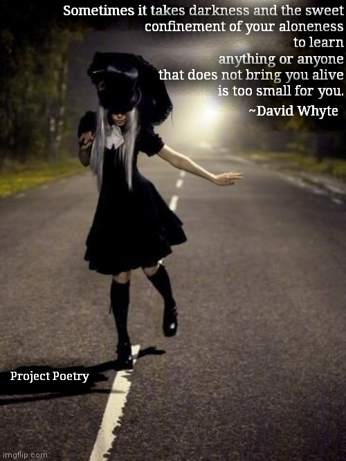 Project Poetry |  Sometimes it takes darkness and the sweet confinement of your aloneness to learn anything or anyone that does not bring you alive is too small for you. ~David Whyte; Project Poetry | image tagged in art,darkness,poetry,gothic | made w/ Imgflip meme maker
