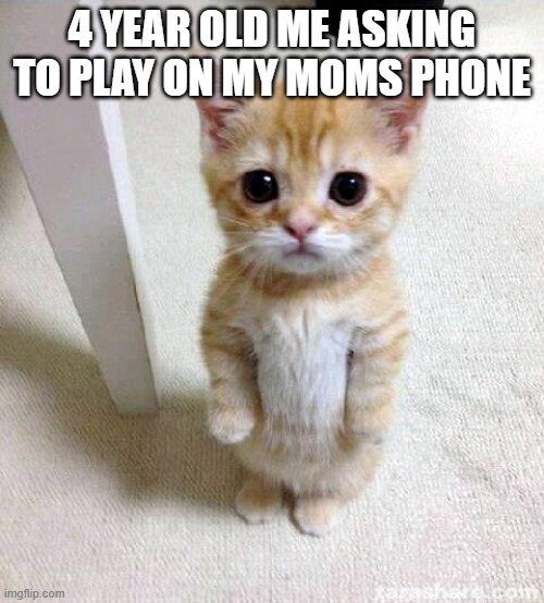 Cute Cat |  4 YEAR OLD ME ASKING TO PLAY ON MY MOMS PHONE | image tagged in memes,cute cat | made w/ Imgflip meme maker
