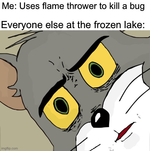 Darn roach! |  Me: Uses flame thrower to kill a bug; Everyone else at the frozen lake: | image tagged in memes,unsettled tom | made w/ Imgflip meme maker