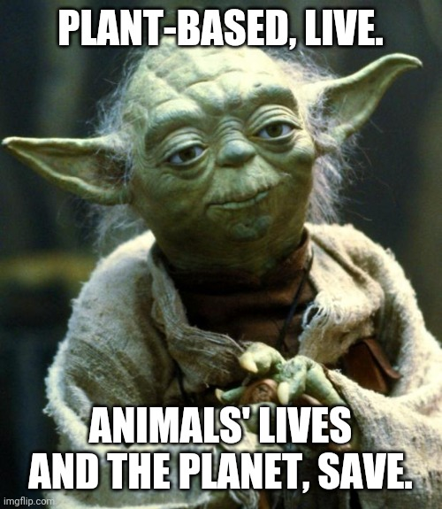 Plant-based Yoda |  PLANT-BASED, LIVE. ANIMALS' LIVES AND THE PLANET, SAVE. | image tagged in memes,star wars yoda | made w/ Imgflip meme maker