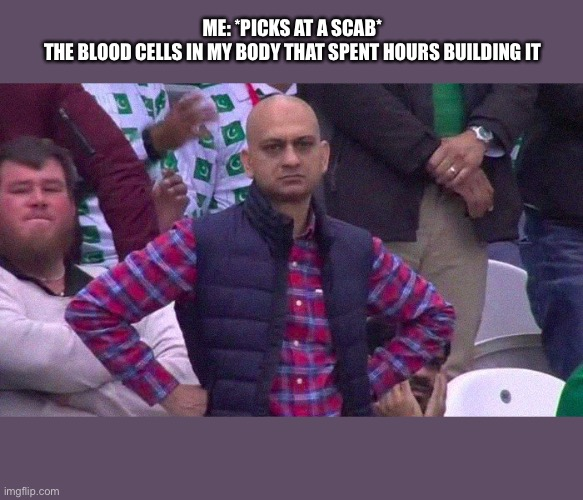 Angry Pakistani Fan |  ME: *PICKS AT A SCAB* THE BLOOD CELLS IN MY BODY THAT SPENT HOURS BUILDING IT | image tagged in angry pakistani fan | made w/ Imgflip meme maker