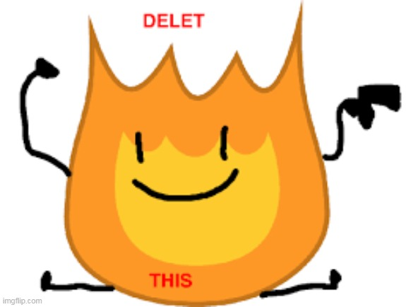 Firey delete this | image tagged in delete this,fire | made w/ Imgflip meme maker