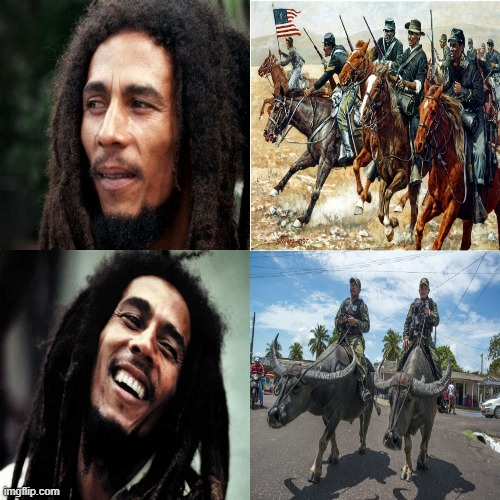 Buffalo sol-jah.... | image tagged in memes,bob marley,buffalo,drake hotline bling,approves | made w/ Imgflip meme maker