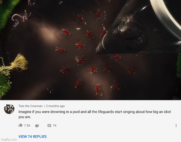 This comment | image tagged in youtube comments,willy wonka,chocolate | made w/ Imgflip meme maker