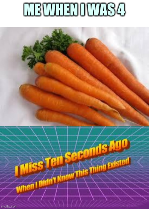 ME WHEN I WAS 4 | image tagged in carrots,i miss 10 seconds ago when i didn't know this thing existed | made w/ Imgflip meme maker
