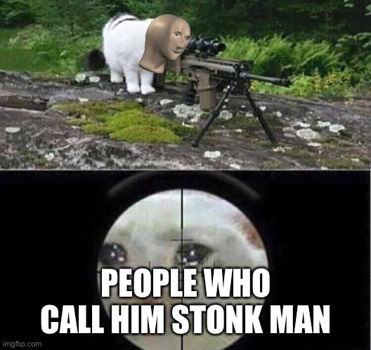 Sniper cat aim crying cat | PEOPLE WHO CALL HIM STONK MAN | image tagged in sniper cat aim crying cat | made w/ Imgflip meme maker