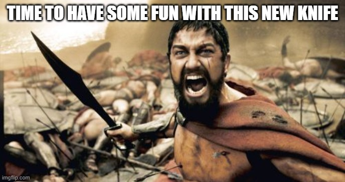 Sparta Leonidas |  TIME TO HAVE SOME FUN WITH THIS NEW KNIFE | image tagged in memes,sparta leonidas | made w/ Imgflip meme maker