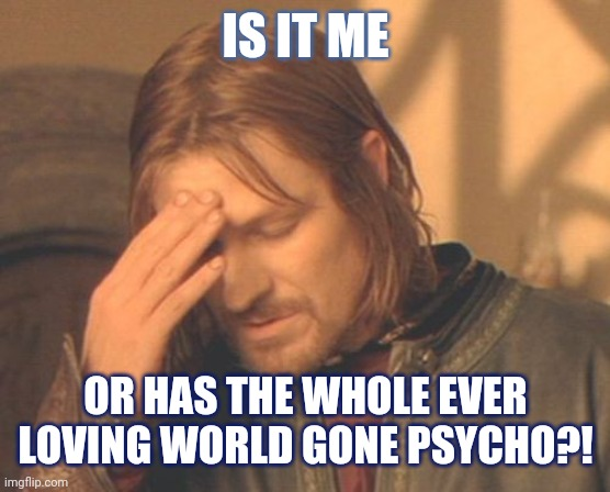 Frustrated Boromir |  IS IT ME; OR HAS THE WHOLE EVER LOVING WORLD GONE PSYCHO?! | image tagged in memes,frustrated boromir | made w/ Imgflip meme maker