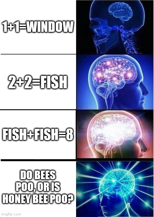 Expanding Brain Meme |  1+1=WINDOW; 2+2=FISH; FISH+FISH=8; DO BEES POO, OR IS HONEY BEE POO? | image tagged in memes,expanding brain | made w/ Imgflip meme maker