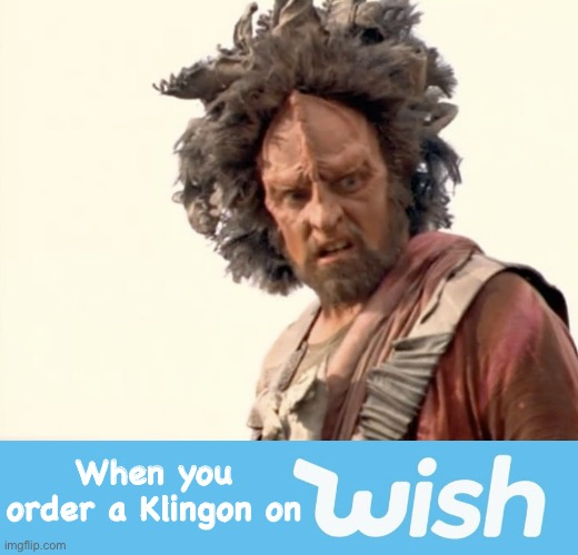 The Ferengi must have started Wish |  When you order a Klingon on | image tagged in star trek,klingon,star trek voyager,wish,online shopping,buy | made w/ Imgflip meme maker