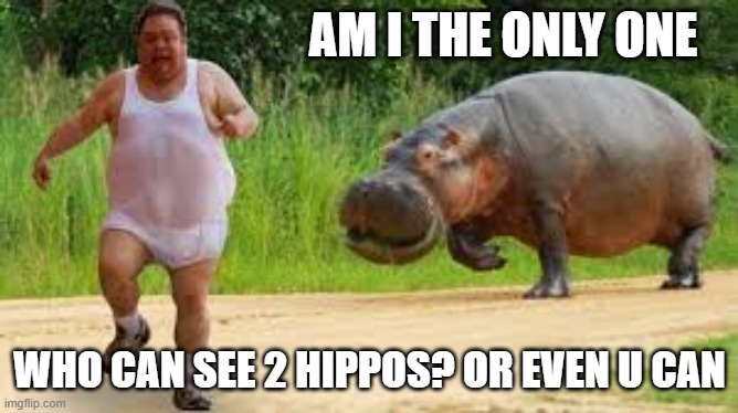 AM I THE ONLY ONE; WHO CAN SEE 2 HIPPOS? OR EVEN U CAN | image tagged in hippo | made w/ Imgflip meme maker