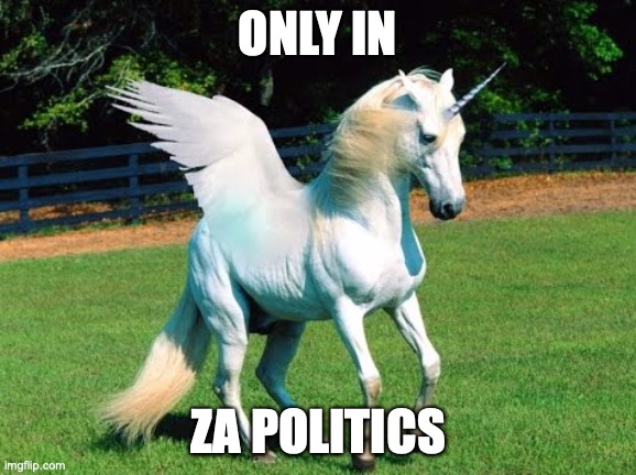 ZA Politics |  ONLY IN; ZA POLITICS | image tagged in unicorn | made w/ Imgflip meme maker