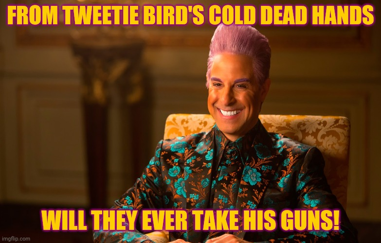 Caesar Flickerman (Stanley Tucci) | FROM TWEETIE BIRD'S COLD DEAD HANDS WILL THEY EVER TAKE HIS GUNS! | image tagged in caesar flickerman stanley tucci | made w/ Imgflip meme maker