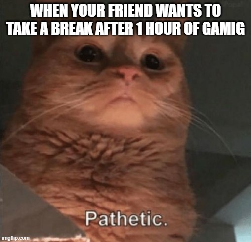 Pathetic |  WHEN YOUR FRIEND WANTS TO TAKE A BREAK AFTER 1 HOUR OF GAMIG | image tagged in pathetic cat | made w/ Imgflip meme maker