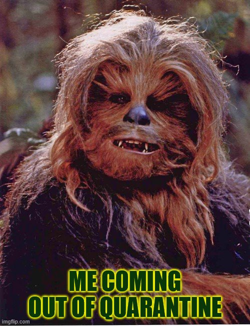 Quarantine Chewbacca |  ME COMING OUT OF QUARANTINE | image tagged in chewbacca | made w/ Imgflip meme maker