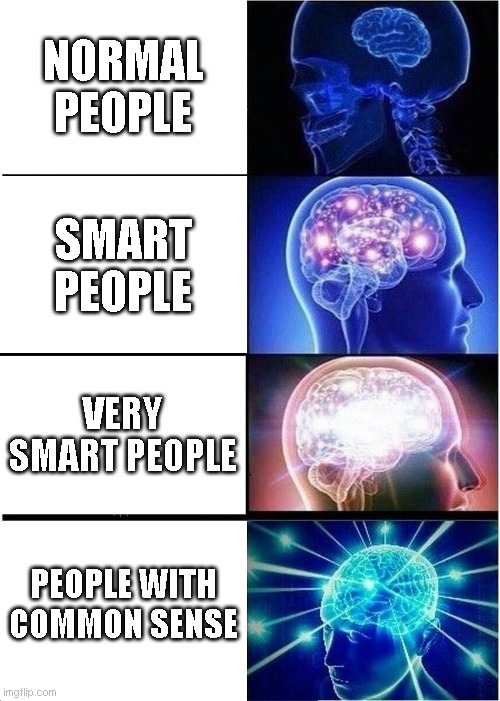 Common Sense Is Not So Common |  NORMAL PEOPLE; SMART PEOPLE; VERY SMART PEOPLE; PEOPLE WITH COMMON SENSE | image tagged in memes,expanding brain,smart | made w/ Imgflip meme maker