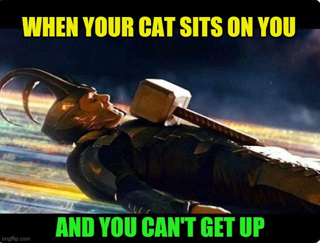 Loki Cat Worthy |  WHEN YOUR CAT SITS ON YOU; AND YOU CAN'T GET UP | image tagged in loki,thor hammer,cat,worthy,marvel,memes | made w/ Imgflip meme maker