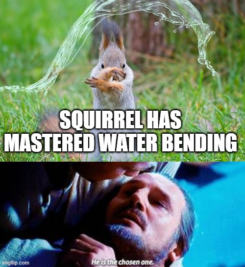 He's the chosen one :) |  SQUIRREL HAS MASTERED WATER BENDING | image tagged in memes | made w/ Imgflip meme maker