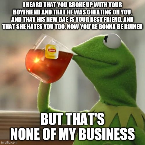 None of my business |  I HEARD THAT YOU BROKE UP WITH YOUR BOYFRIEND AND THAT HE WAS CHEATING ON YOU. AND THAT HIS NEW BAE IS YOUR BEST FRIEND. AND THAT SHE HATES YOU TOO. NOW YOU'RE GONNA BE RUINED; BUT THAT'S NONE OF MY BUSINESS | image tagged in memes,but that's none of my business,kermit the frog | made w/ Imgflip meme maker
