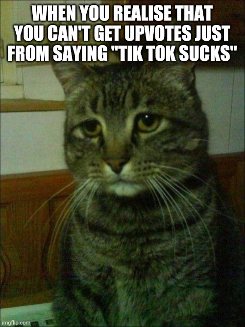 "How am I supposed to get upvotes now? |  WHEN YOU REALISE THAT YOU CAN'T GET UPVOTES JUST FROM SAYING ""TIK TOK SUCKS"" 