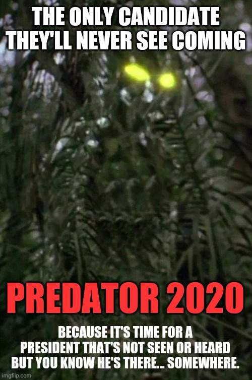 Predator invisible |  THE ONLY CANDIDATE THEY'LL NEVER SEE COMING; PREDATOR 2020; BECAUSE IT'S TIME FOR A PRESIDENT THAT'S NOT SEEN OR HEARD BUT YOU KNOW HE'S THERE... SOMEWHERE. | image tagged in predator,election 2020 | made w/ Imgflip meme maker