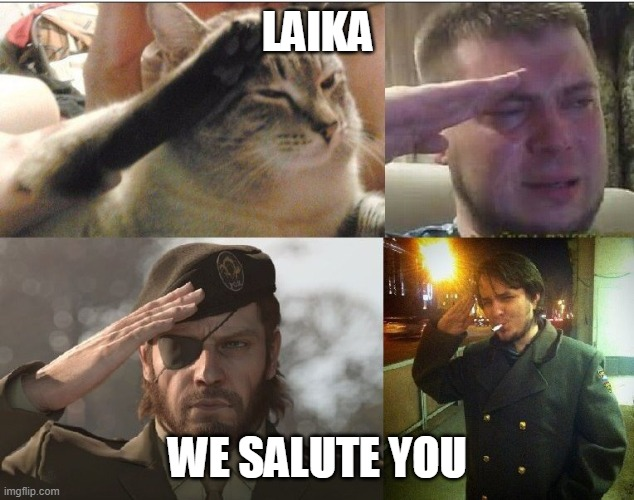 Four-Man Salute | LAIKA WE SALUTE YOU | image tagged in four-man salute | made w/ Imgflip meme maker