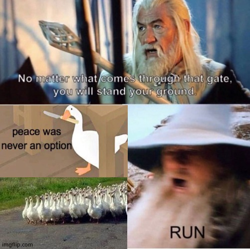 no matter what comes through that gate | image tagged in no matter what comes through that gate,untitled goose peace was never an option | made w/ Imgflip meme maker