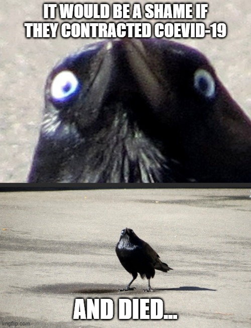 Crow |  IT WOULD BE A SHAME IF THEY CONTRACTED COEVID-19; AND DIED... | image tagged in crow | made w/ Imgflip meme maker