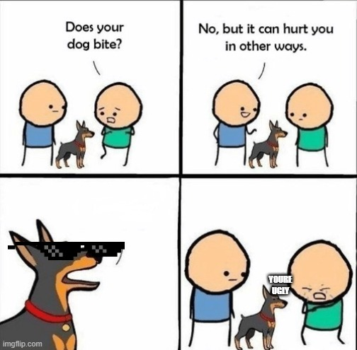 YOURE UGLY | image tagged in dog meme | made w/ Imgflip meme maker