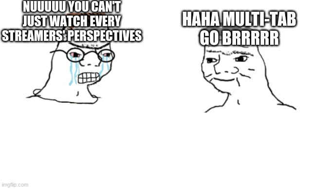 haha brrrrrrr |  NUUUUU YOU CAN'T JUST WATCH EVERY STREAMERS' PERSPECTIVES; HAHA MULTI-TAB GO BRRRRR | image tagged in haha brrrrrrr,streaming | made w/ Imgflip meme maker