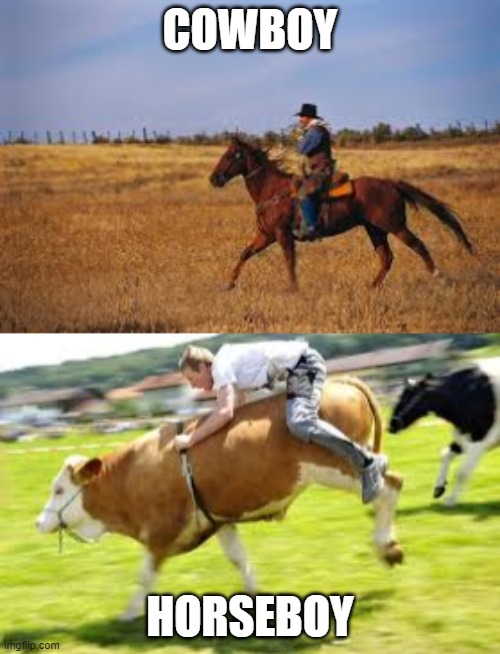 Cowboy And Horseboy |  COWBOY; HORSEBOY | image tagged in memes,funny,so true memes,lol so funny,cowboy,horse | made w/ Imgflip meme maker
