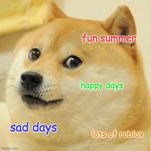 doge |  fun summer; happy days; sad days; lots of roblox | image tagged in memes,doge | made w/ Imgflip meme maker