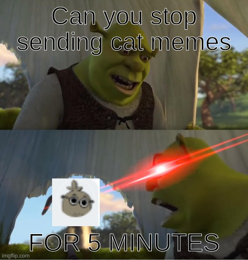 Shrek For Five Minutes |  Can you stop sending cat memes; FOR 5 MINUTES | image tagged in shrek for five minutes | made w/ Imgflip meme maker