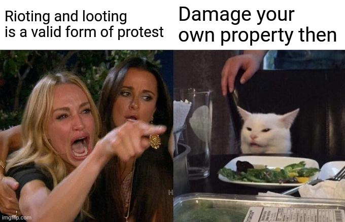 There's a thought |  Rioting and looting is a valid form of protest; Damage your own property then | image tagged in blm,antifa,riots,protesters,woke,leftists | made w/ Imgflip meme maker