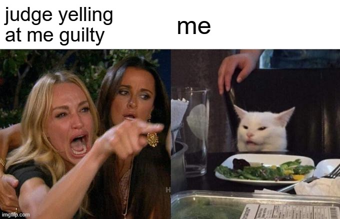 Woman Yelling At Cat |  judge yelling at me guilty; me | image tagged in memes,woman yelling at cat | made w/ Imgflip meme maker