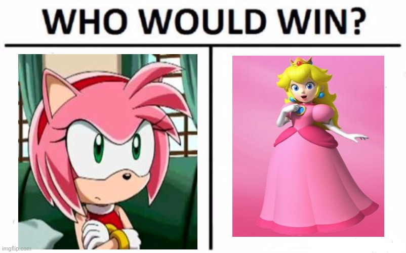 Put a comment down bolw for who will win plz | image tagged in memes,who would win,amy rose,princess peach,mario,sonic | made w/ Imgflip meme maker