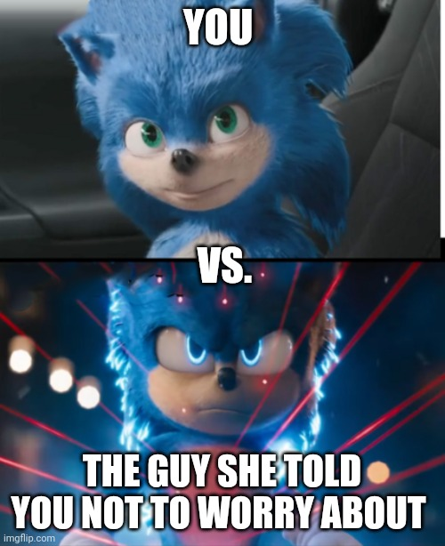 Sonic movie |  YOU; VS. THE GUY SHE TOLD YOU NOT TO WORRY ABOUT | image tagged in new sonic movie,you vs the guy she tells you not to worry about,sonic,sonic the hedgehog | made w/ Imgflip meme maker