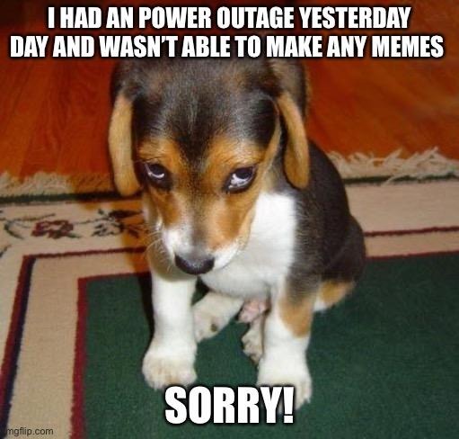 Sorry |  I HAD AN POWER OUTAGE YESTERDAY DAY AND WASN'T ABLE TO MAKE ANY MEMES; SORRY! | image tagged in sorry | made w/ Imgflip meme maker