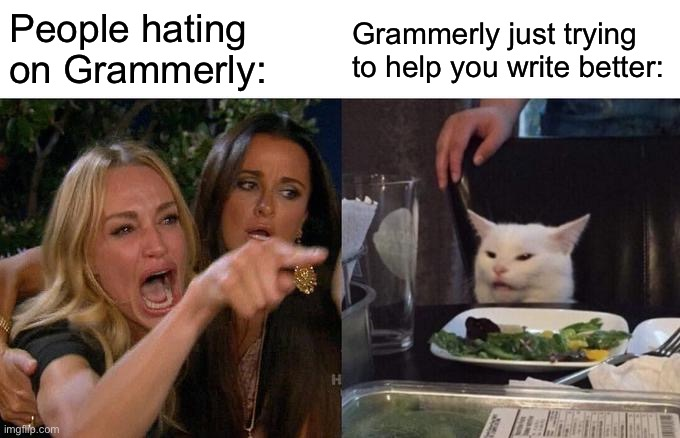 Why Does Everyone Hate Grammerly? |  People hating on Grammerly:; Grammerly just trying to help you write better: | image tagged in memes,woman yelling at cat | made w/ Imgflip meme maker
