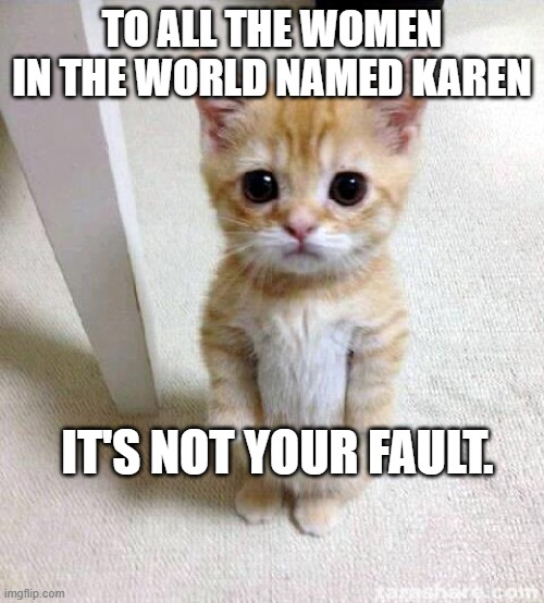 Karen Kitten |  TO ALL THE WOMEN IN THE WORLD NAMED KAREN; IT'S NOT YOUR FAULT. | image tagged in memes,cute cat,karen,forgive | made w/ Imgflip meme maker