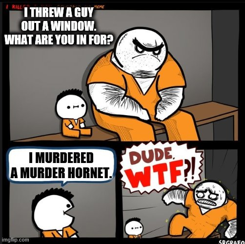 Srgrafo dude wtf |  I THREW A GUY OUT A WINDOW. WHAT ARE YOU IN FOR? I MURDERED A MURDER HORNET. | image tagged in srgrafo dude wtf,memes,murdered a murder hornet | made w/ Imgflip meme maker