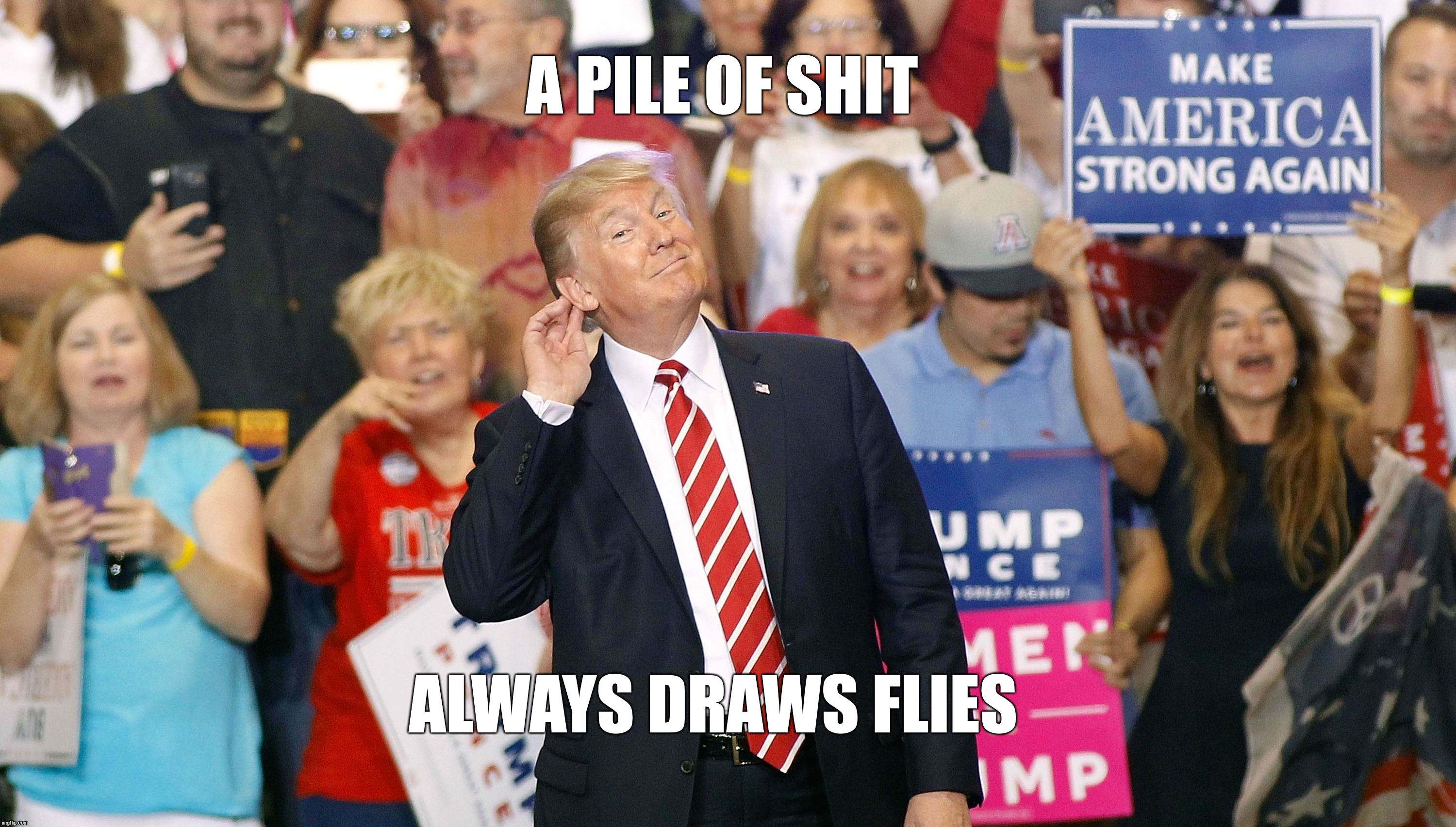 A PILE OF SHIT ALWAYS DRAWS FLIES |  A PILE OF SHIT; ALWAYS DRAWS FLIES | image tagged in pos,flies,trump,rally | made w/ Imgflip meme maker