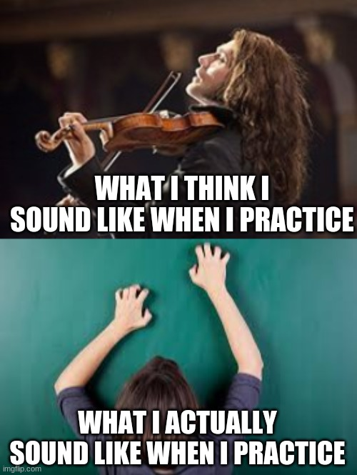 WHAT I THINK I SOUND LIKE WHEN I PRACTICE; WHAT I ACTUALLY SOUND LIKE WHEN I PRACTICE | image tagged in twoset,music,lingling,memes,funny,practice | made w/ Imgflip meme maker